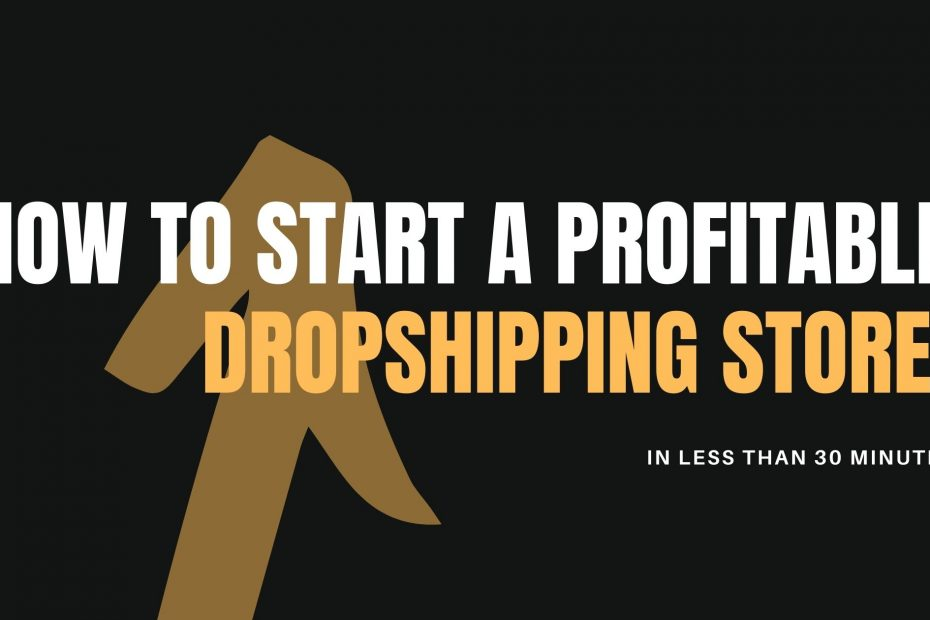 start dropshipping store
